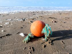 Flotsam orange buoy on the beach