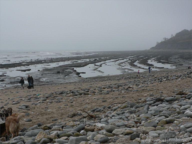 Rocky ledges at low tide
