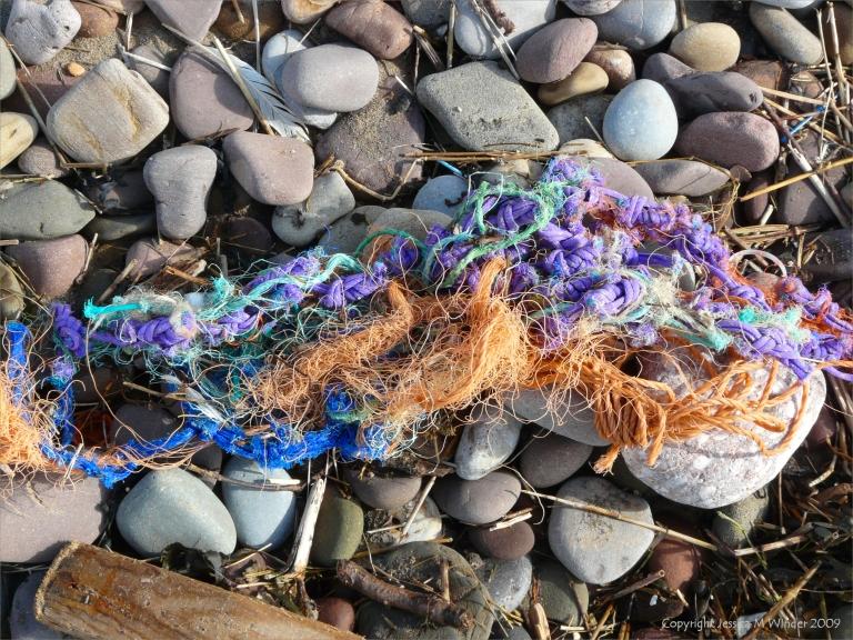 Multi-coloured ropes on the strandline