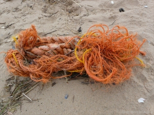 Orange rope flotsam on the strandline