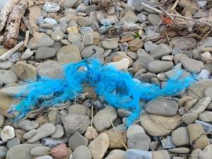 Blue flotsam rope on the strandline