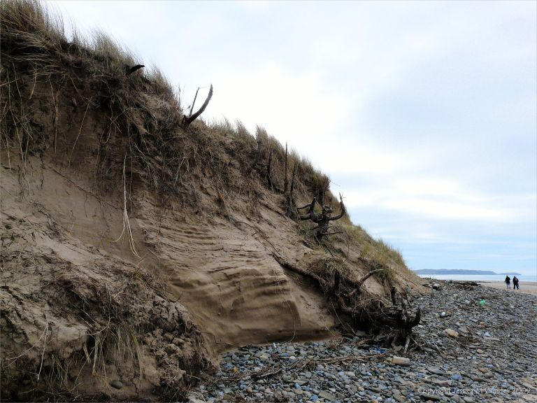 Stages in dune erosion