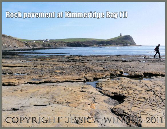 P1050977aBlog1 Yellow rock pavement at Kimmeridge Bay, Dorset, UK on the Jurassic Coast World Heritage Site