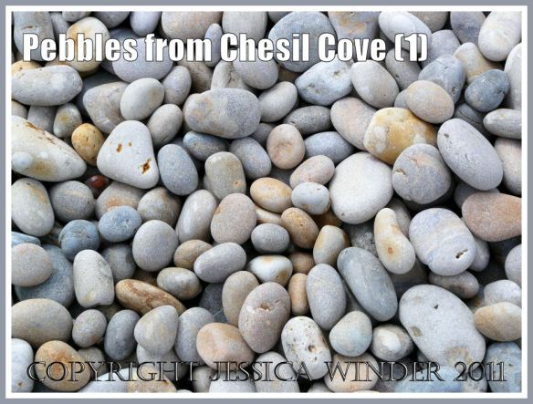 Chesil Beach pebbles: Dry pebbles from Chesil Cove, Portland, Dorset, UK - part of the Jurassic Coast