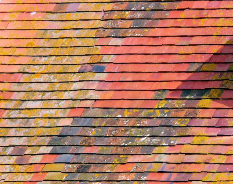 P1080664a Patchwork of lichen and multi-coloured tiles on a roof top in Chiswell, Portland, Dorset, UK.