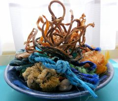 Beachcombings in a blue bowl on my windowsill (1)
