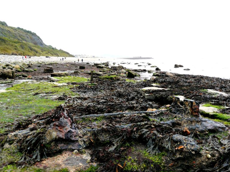 Looking eastwards at remains of old rail track among seaweed on the beach at Lyme Regis, Dorset - part of the Jurassic Coast.