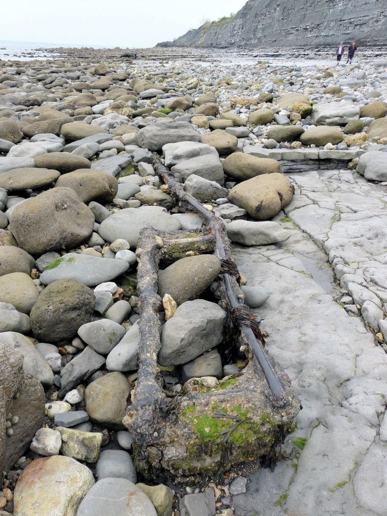 Detached lengths of corroded iron rail track from the old cement workings on Monmouth Beach, Lyme Regis, Dorset - part of the Jurassic Coast.