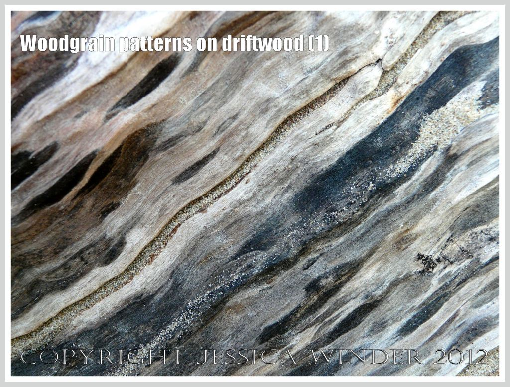 Woodgrain pattern on driftwood (1) - Natural abstract pattern of staining caused by fungal invasion on weathered driftwood washed ashore at Whiteford Sands, Gower, South Wales.