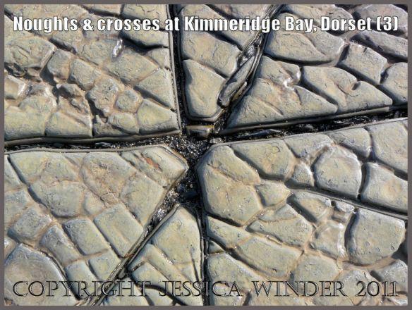 Cross or star-shaped crack (3) in the dolomite rock pavement or platform at Kimmeridge Bay, Dorset, UK on the Jurassic Coast World Heritage Site.