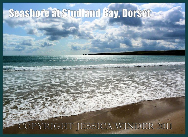 Seashore at Studland Bay, Dorset