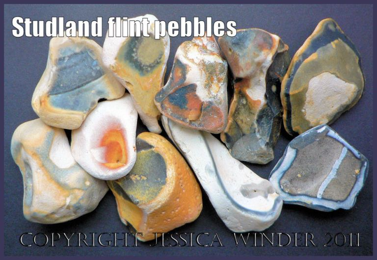 Pebble pictures: Multi-coloured and patterned pebbles made of broken flint from the sandy seashore at Studland Bay, Dorset, Uk on the Jurassic Coast world Heritage Site.