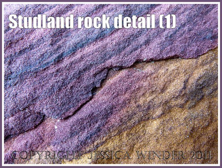 Studland Bay rock : Purple rock strata in sandstone on the National Trust owned beach at Studland Bay, Dorset, UK, on the Jurassic Coast World Heritage Site (1)