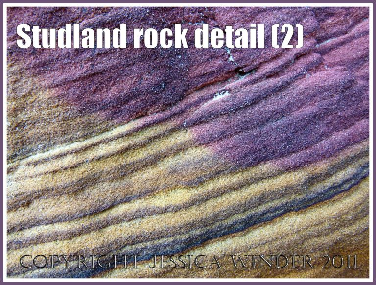 Rock strata from the Jurassic Coast: Purple rock strata in sandstone on the National Trust owned beach at Studland Bay, Dorset, UK, on the Jurassic Coast World Heritage Site (2)