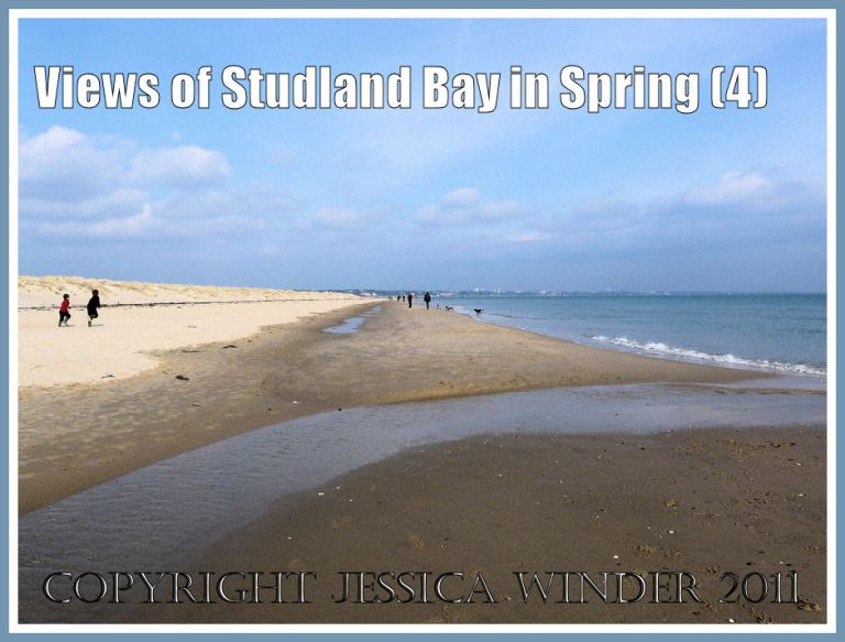 Studland Beach image: Low sand banks and backwaters high on Studland Beach, Dorset, UK, March 2009, part of the Jurassic Coast (P1050434aBlog4)