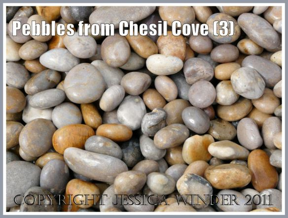 Pebbles on Chesil Beach: Large wet pebbles from the easternmost end of Chesil Cove, Portland, Dorset, UK - part of the Jurassic Coast (3)