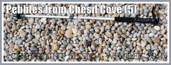 Pebbles on Chesil Beach: Medium sized pebbles from the top of the shingle bank of Chesil Beach, one mile west of Chesil Cove, Portland, Dorset, UK - part of the Jurassic Coast (5)