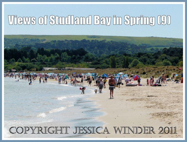 Hundreds of happy visitors enjoying the sun at Studland Bay, Dorset, UK in May 2009. Part of the Jurassic Coast (P1090605aBlog9)