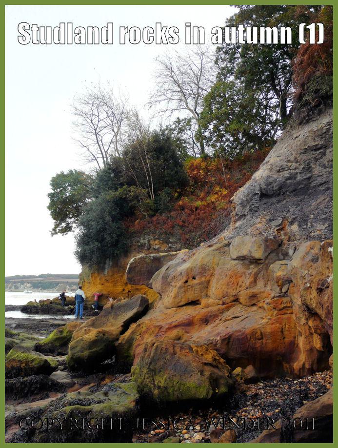 Rocks picture: Cliffs at Studland, Dorset, UK - part of the Jurassic Coast (P1170430aBlog1)