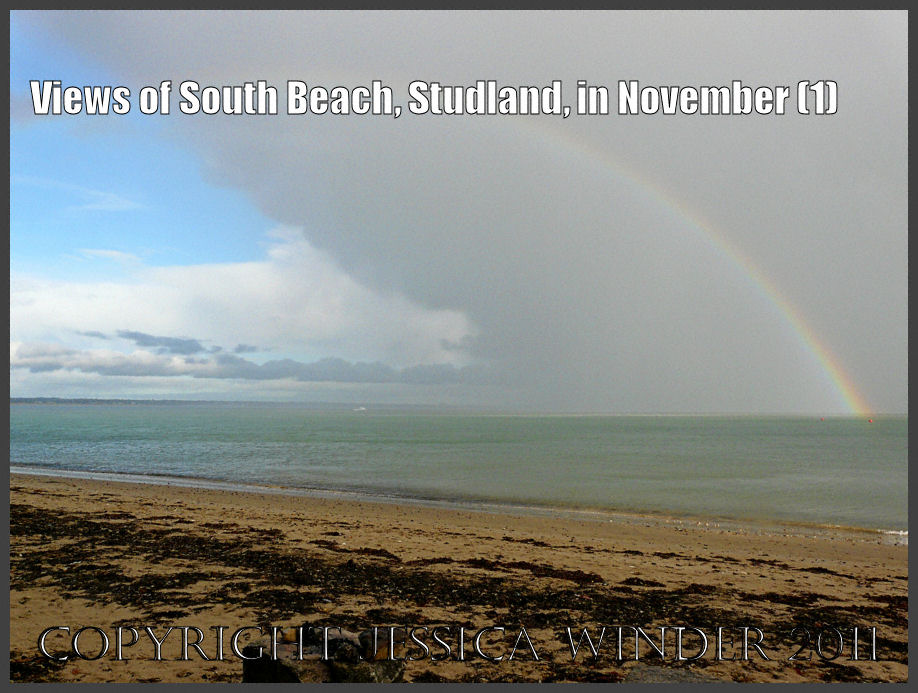 Views of South Beach, Studland, in November – Jessica's Nature Blog