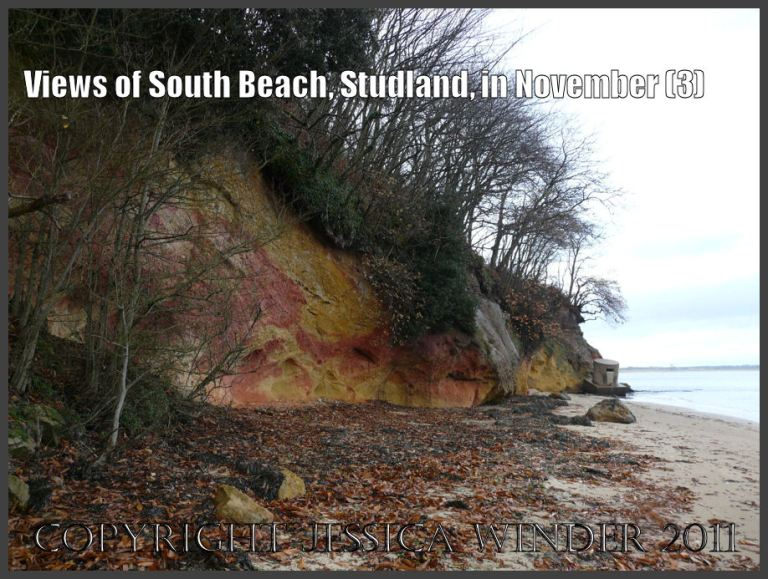 Studland Bay beach: The red and yellow iron-bearing sandstone strata in the cliff at South Beach, Studland, Dorset, UK - part of the Jurassic Coast, 27th November 2009 (3)