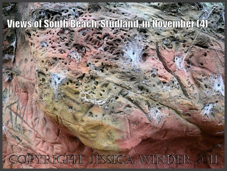 Rock picture: Detail of miner bee burrows and spider cobwebs on red and yellow ferruginous rock in the cliff face at South Beach, Studland, Dorset, UK - part of the Jurassic Coast (4)