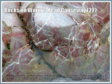 Gower rocks: Smooth water-worn Carboniferous limestone rock with white veins and tints of pink at low tide on Worms Head Causeway, Rhossili, Gower, South Wales, UK (4)