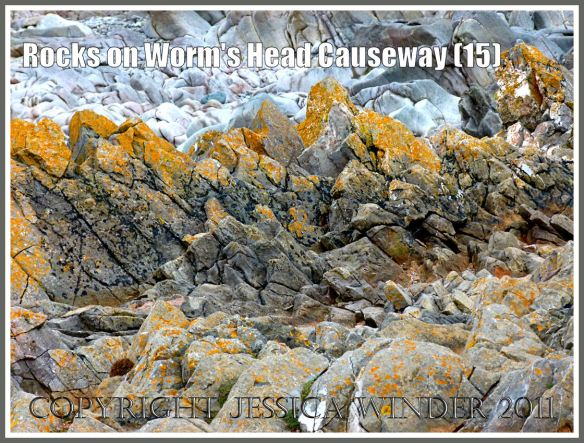 Rocks on Worms Head Causeway: Jagged limestone rocks with yellow lichen on the upper shore, and smooth water-worn clean rocks behind them and lower down the shore , on the Worm's Head Causeway in Gower, South Wales, UK (15)