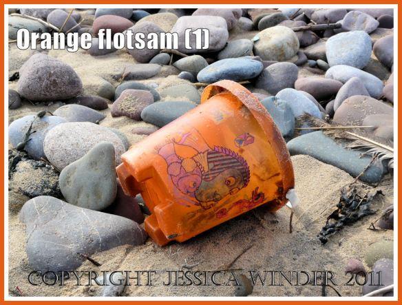 Orange flotsam: A child's orange plastic seaside bucket with pictures of fish washed ashore on the beach as flotsam (1)