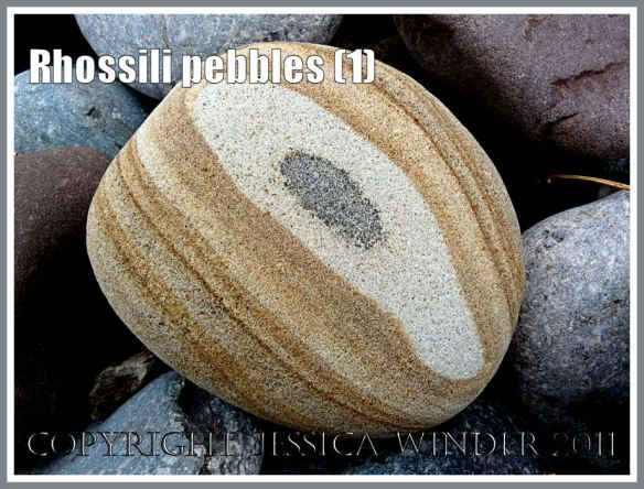 Rhossili pebbles: Pebble with a pattern on Rhossili Beach, Gower, South Wales, UK (1)