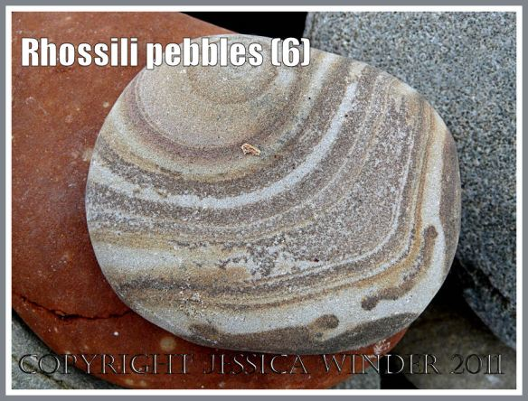 Rhossili pebbles: Pebble with a pattern on Rhossili Beach, Gower, South Wales, UK (6)
