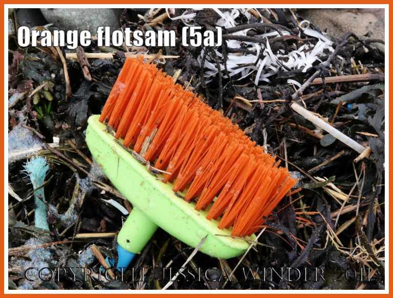 Orange flotsam: Close-up of a deck brush with green plastic base and orange-bristles washed ashore as flotsam onto the pebble beach strandline with seaweed (5a)