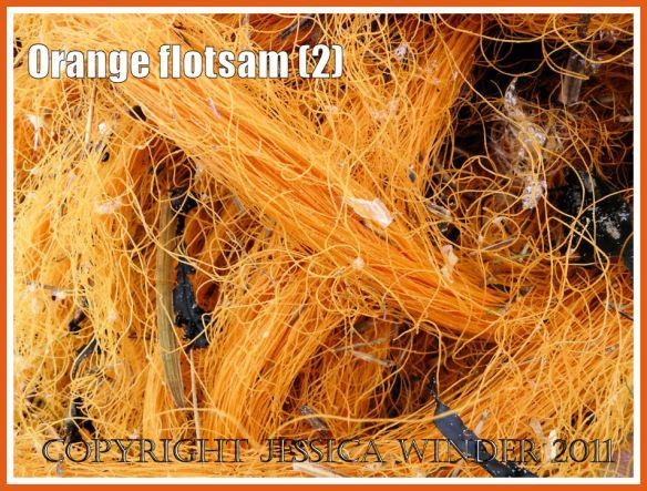 Gower flotsam: Detail of orange mono-filament nylon fishing net washed ashore as flotsam (2)
