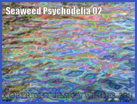 Digital abstract image of floating seaweed: A psychodelic representation of seaweed floating on gently undulating waves - a digitally altered photograph (2)