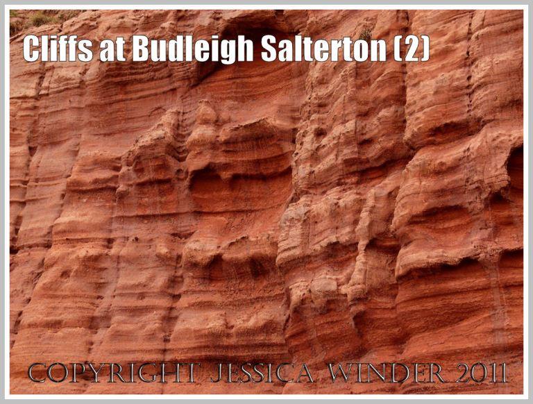 Red rock strata: Red Triassic sandstone strata in the cliff at Budleigh Salterton, Devon, U.K. on the Jurassic Coast World Heritage Site (2)