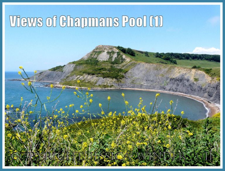 View of Chapmans Pool, Dorset, UK - part of the Jurassic Coast World Heritage Site (1).