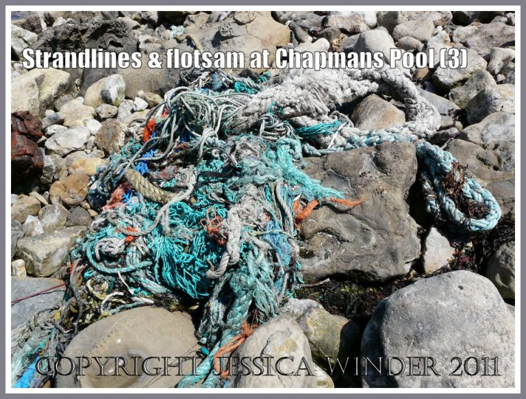 Chapmans Pool strandline flotsam: A tangled mass of multicoloured fishing ropes on the strandline at Chapmans Pool, Dorset, UK - part of the Jurassic Coast (3)