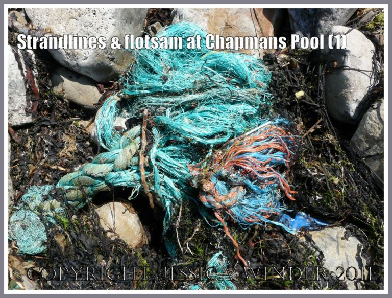 Chapmans pool flotsam: Knotted rope on the strandline at Chapmans Pool, Dorset, UK - part of the Jurassic Coast (1)