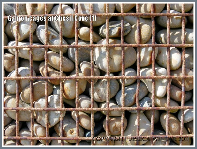 Pebbles in metal gabion cage: Close-up of pebble-filled metal gabion cage used for sea defence at Chesil Cove, Isle of Portland, Dorset, U.K. on the Jurassic Coast (1)