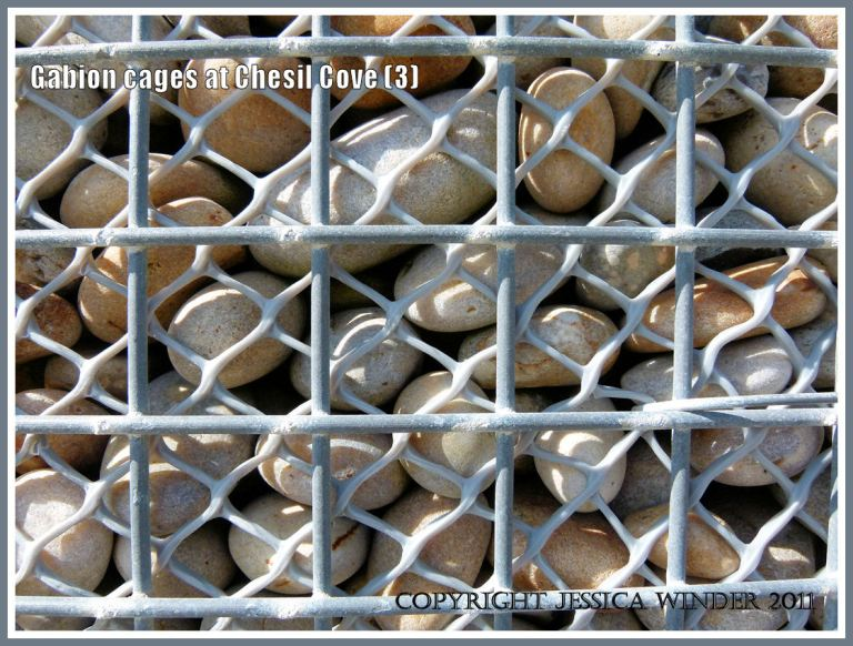 Metal and plastic mesh on a gabion: Close-up of pebble-filled metal and plastic meshed gabion cage used for sea defence at Chesil Cove, Isle of Portland, Dorset, U.K. on the Jurassic Coast (3)
