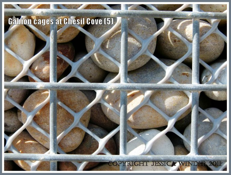Chesil beach pebbles in a gabion: Close-up of beach pebbles in a metal and plastic meshed gabion cage used for sea defence at Chesil Cove, Isle of Portland, Dorset, U.K. on the Jurassic Coast (5)