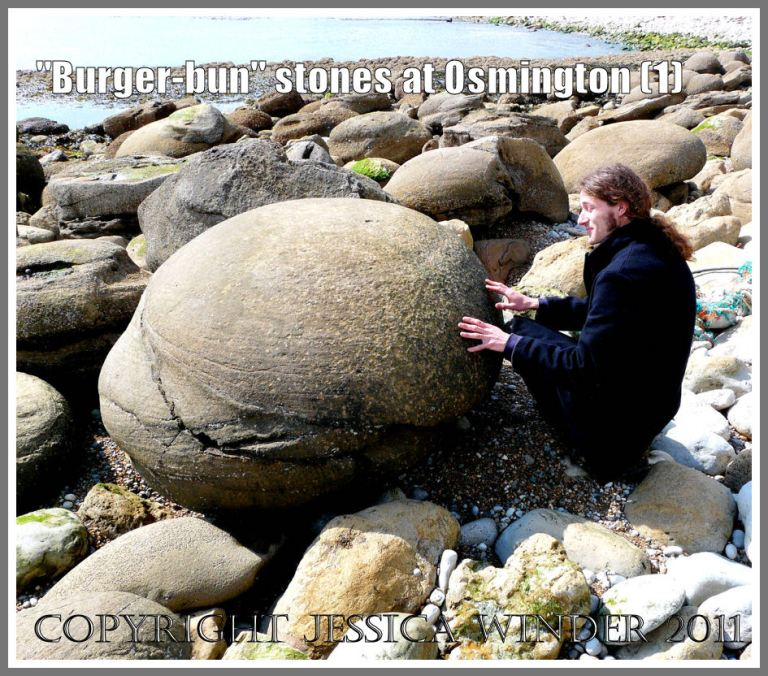 """Beach boulders in Dorset: Giant """"burger-bun"""" pebbles at Osmington Bay, Dorset, UK - nearly spherical carbonate-cemented sandstone nodules of Bencliff Grit from the Corallian Formation Beds - part of the Jurassic Coast (1)"""