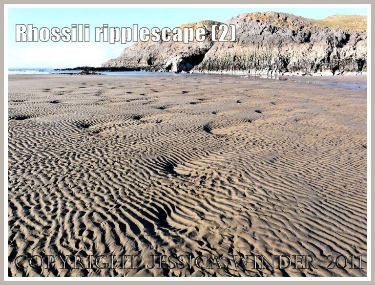Natural patterns in the sand: Ripple patterns on Rhossili beach with the island of Burry Holms in the background, Gower, West Glamorgan, New Year's Day 2010 (2)