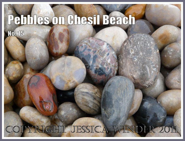 Pebbles on Chesil beach: Pebbles with various colours and patterns on Chesil Beach at Chesil Cove, Isle of Portland, Dorset, UK, on the Jurassic Coast (1)