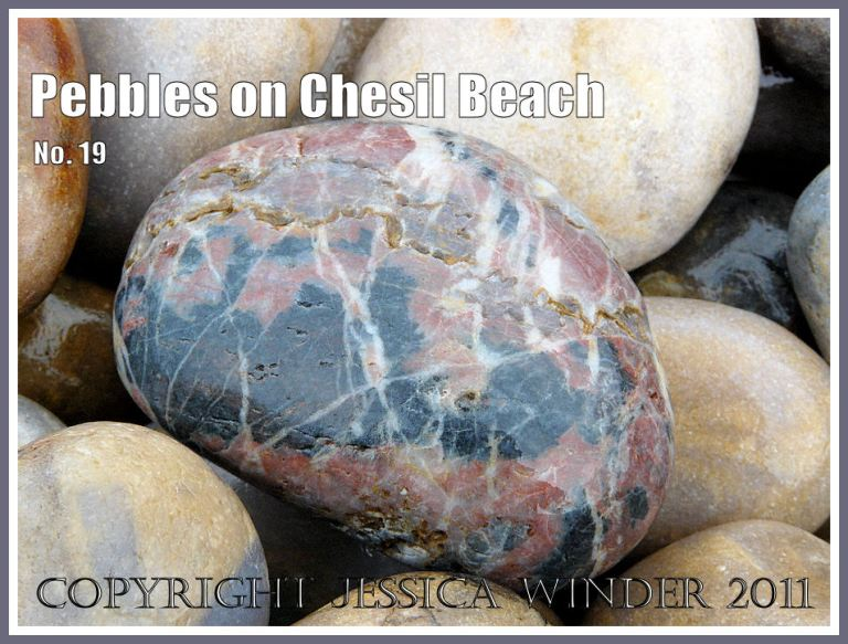 Pebble with pink, black, and white marble-like markings on Chesil Beach at Chesil Cove, Isle of Portland, Dorset, UK, on the Jurassic Coast (5)