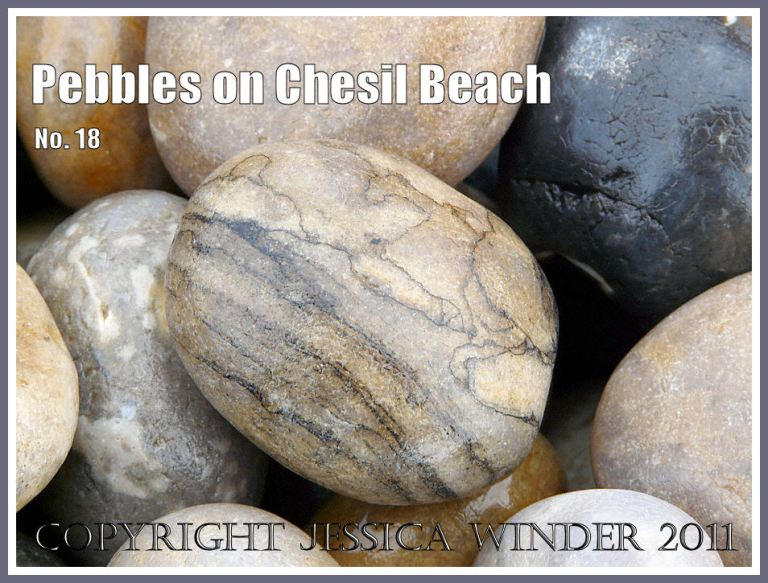 Pebble with layers and lines on Chesil Beach at Chesil Cove, Isle of Portland, Dorset, UK, on the Jurassic Coast (4)