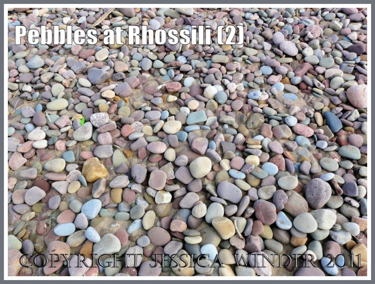 Pebbles like candy on the beach: Pebbles with pastel colours like sugared almonds on the beach at Rhossili Bay, Gower, South Wales, UK (2)