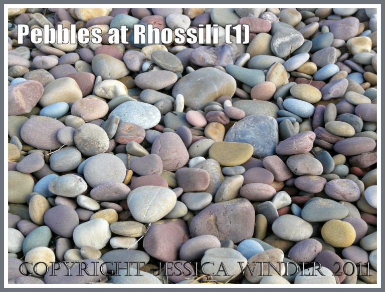 Pebbles with pastel colours like sugared almonds on the beach at Rhossili Bay, Gower, South Wales, UK (1)