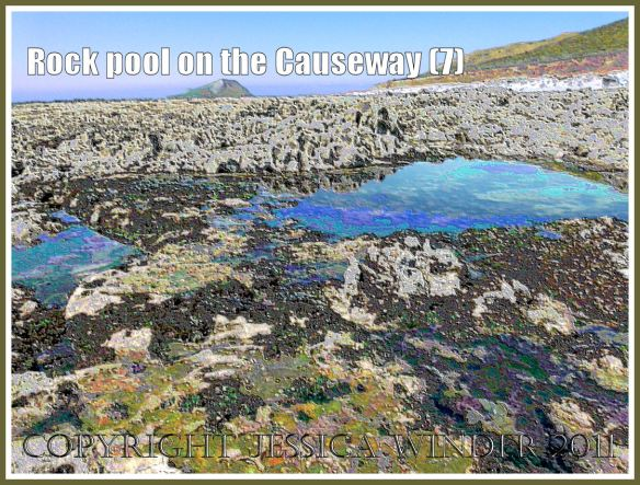 A vista of rocks and tide pools with reflections and seaweeds on Worms Head Causeway, Gower, South Wales, UK, a wave-cut platform of Carboniferous Limestone, with Worms Head in the background - a digitally modified photograph (7)