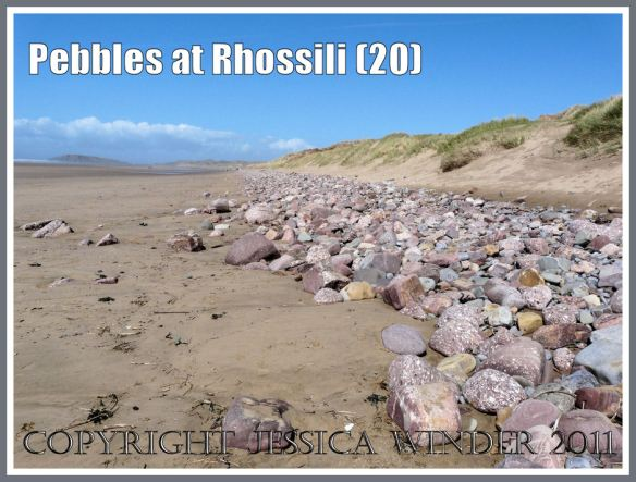 Coloured pebbles on Rhossili Beach: View at Rhossili looking towards Burry Holms, showing bank of multi-coloured pebbles at base of the dune system called Llangennith Burrows, Gower, West Gamorgan, South Wales, UK (20)